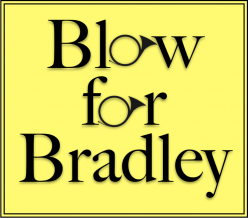 Blow for Bradley